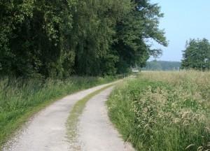 Rad- und Wanderweg