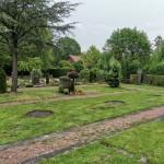 Auf diesen drei Flächen im nördlichen Teil des Friedhofs sollen Wildblumen blühen.